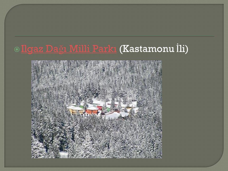 Ilgaz Dağı Milli Parkı (Kastamonu İli)