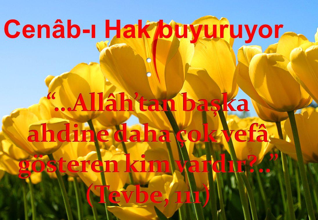 Cenâb-ı Hak buyuruyor : …Allâh'tan başka ahdine daha çok vefâ gösteren kim vardır .. (Tevbe, 111)
