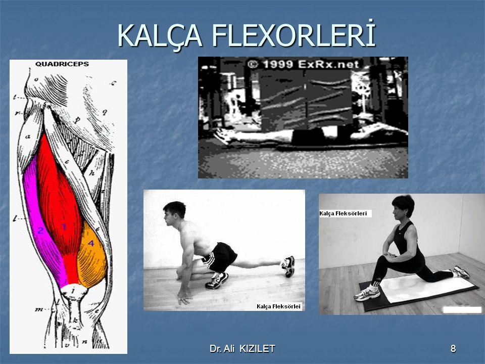 KALÇA FLEXORLERİ Dr. Ali KIZILET