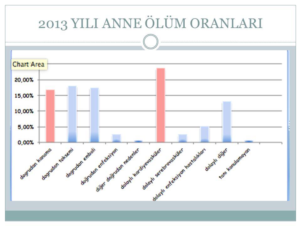 2013 YILI ANNE ÖLÜM ORANLARI