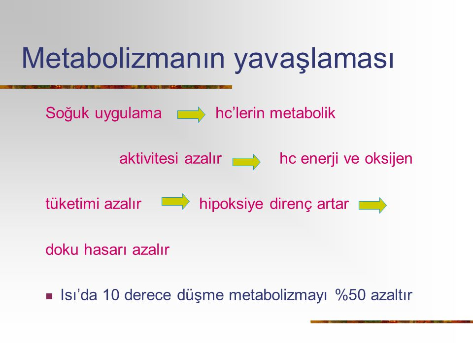 Metabolizmanın yavaşlaması