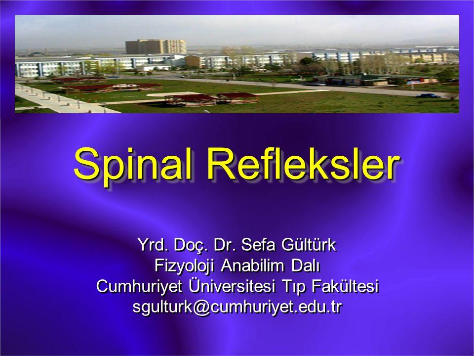 Spinal Refleksler Yrd. Doç. Dr. Sefa Gültürk Fizyoloji Anabilim Dalı