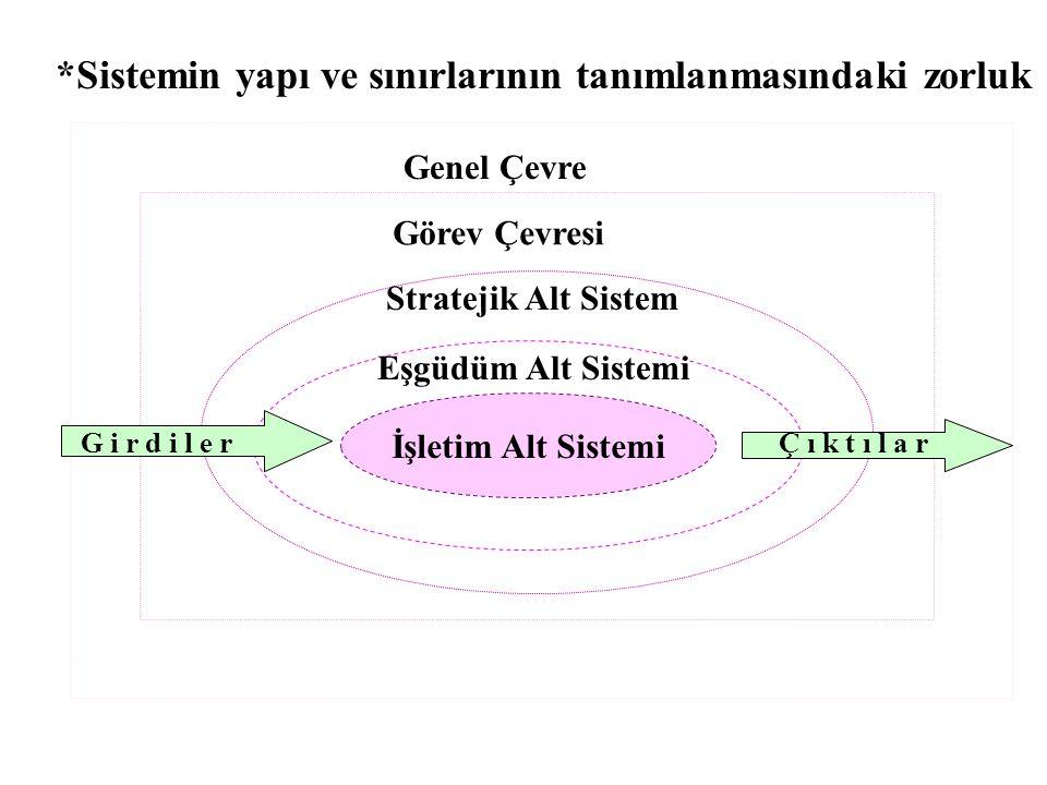 *Sistemin yapı ve sınırlarının tanımlanmasındaki zorluk