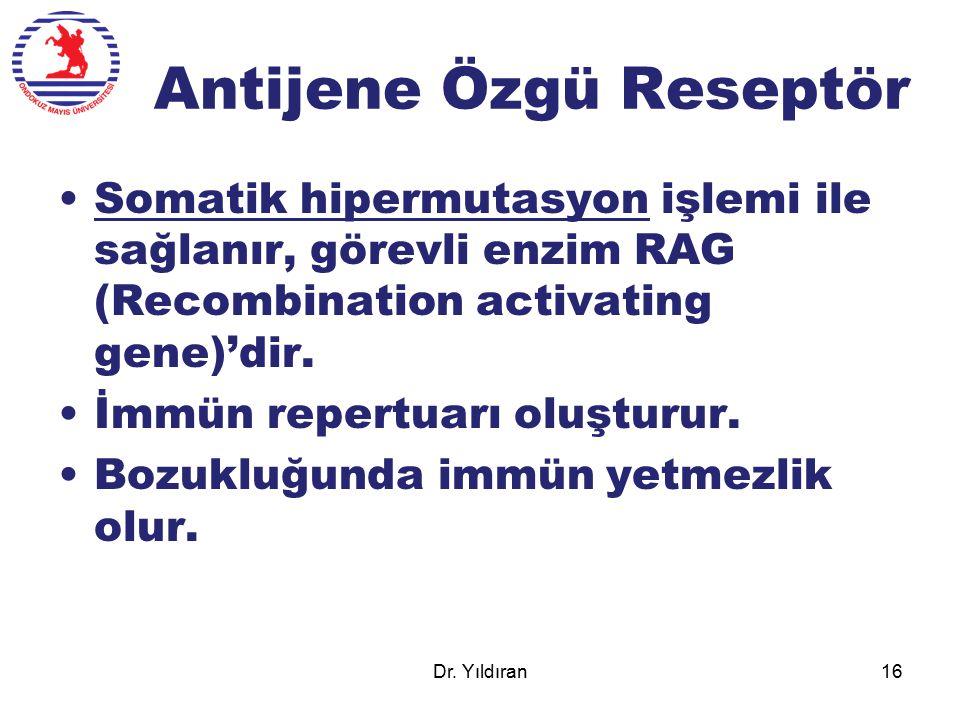 Antijene Özgü Reseptör