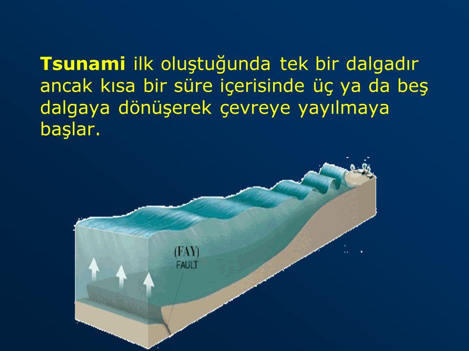 Tsunami ilk oluştuğunda tek bir dalgadır ancak kısa bir süre içerisinde üç ya da beş dalgaya dönüşerek çevreye yayılmaya başlar.