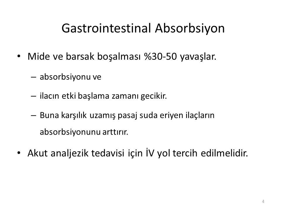 Gastrointestinal Absorbsiyon