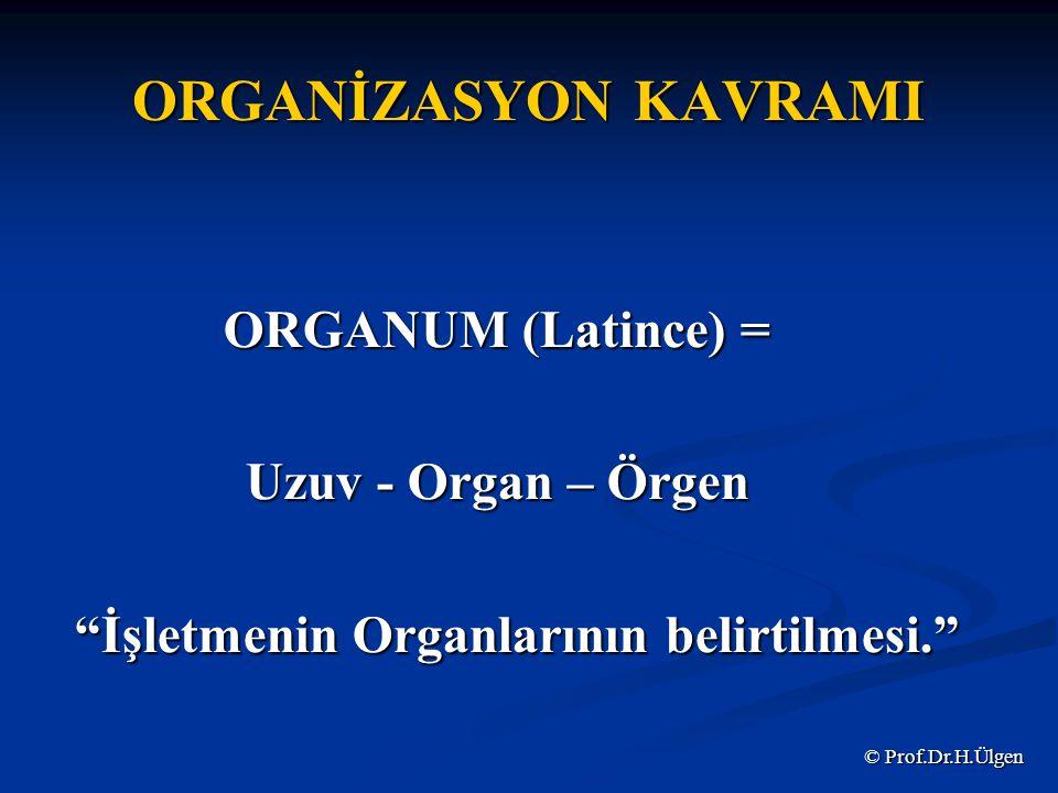 İşletmenin Organlarının belirtilmesi.