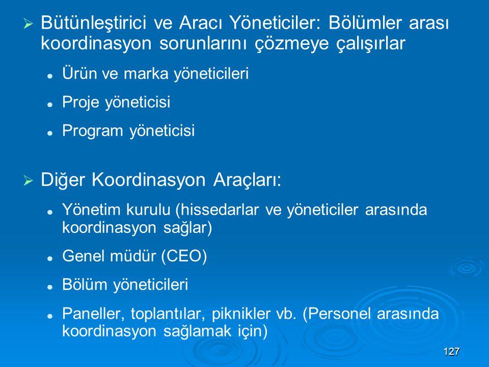 Diğer Koordinasyon Araçları: