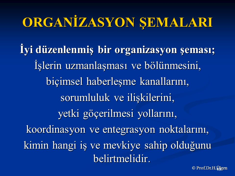 ORGANİZASYON ŞEMALARI