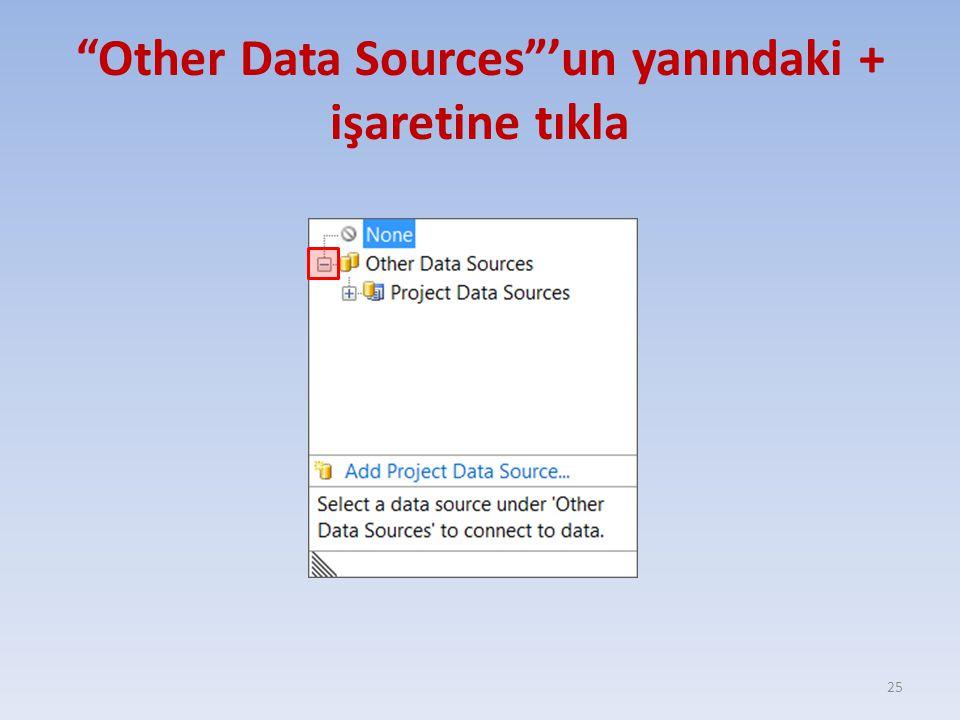 Other Data Sources 'un yanındaki + işaretine tıkla