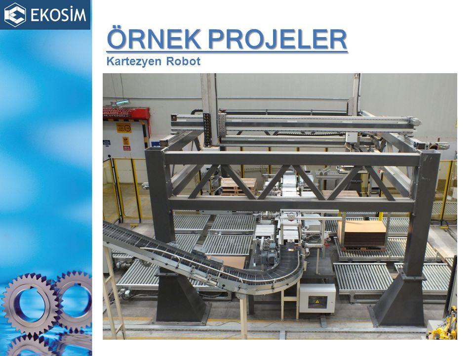 ÖRNEK PROJELER Kartezyen Robot