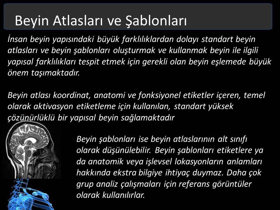 Beyin Atlasları ve Şablonları