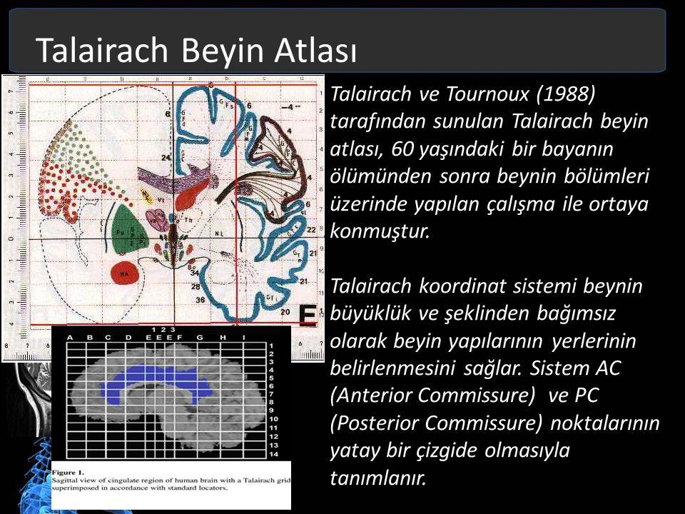 Talairach Beyin Atlası