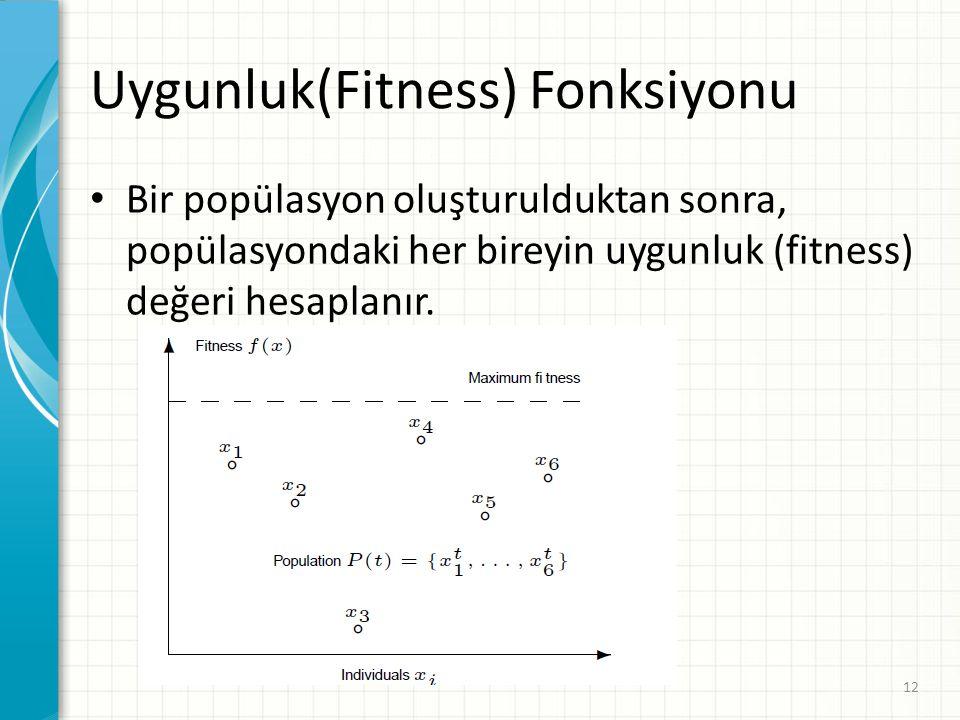 Uygunluk(Fitness) Fonksiyonu