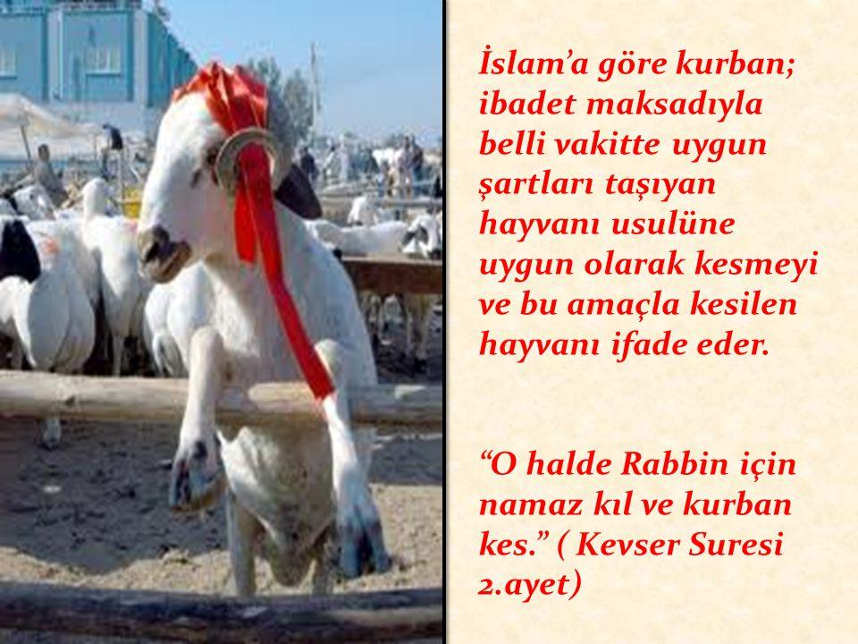 İslam'a göre kurban; ibadet maksadıyla belli vakitte uygun şartları taşıyan hayvanı usulüne uygun olarak kesmeyi ve bu amaçla kesilen hayvanı ifade eder.