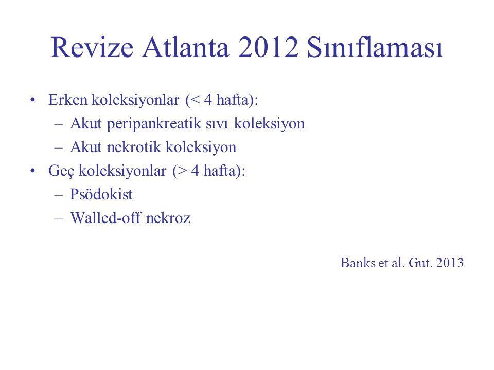 Revize Atlanta 2012 Sınıflaması