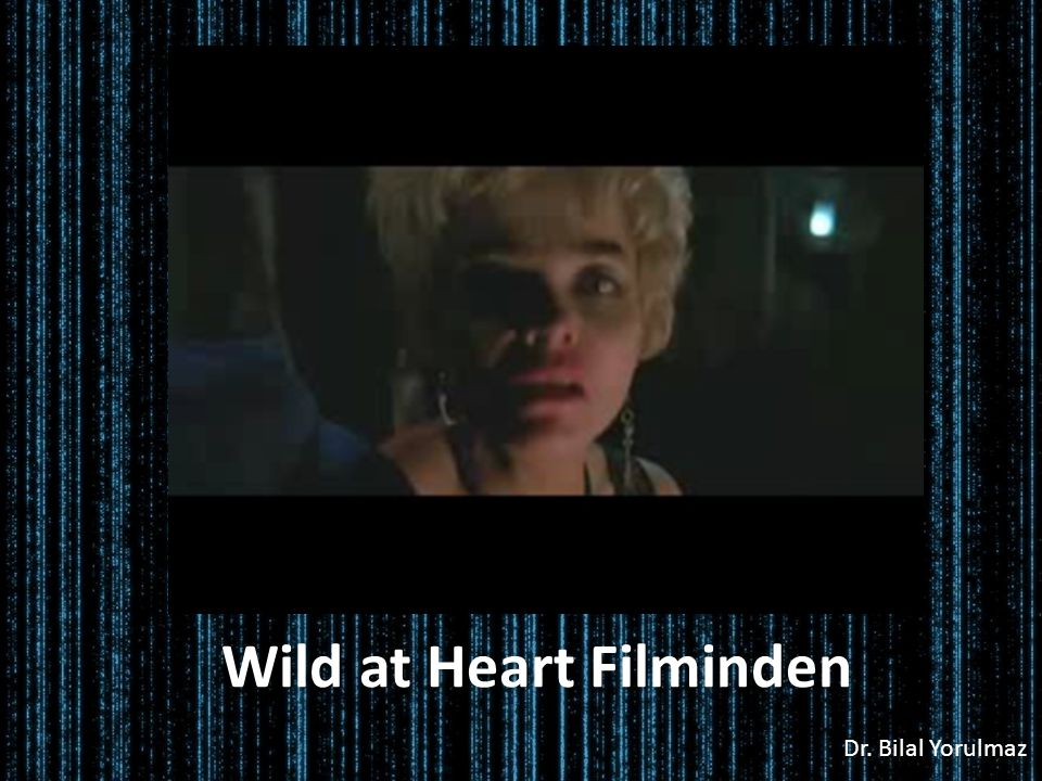 Wild at Heart Filminden