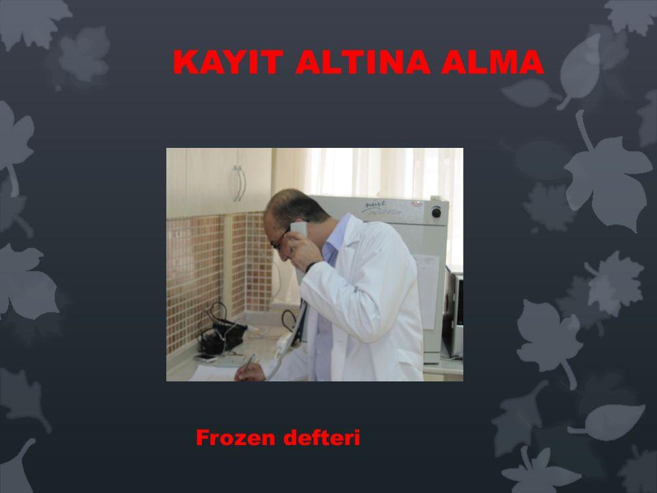 KAYIT ALTINA ALMA Frozen defteri