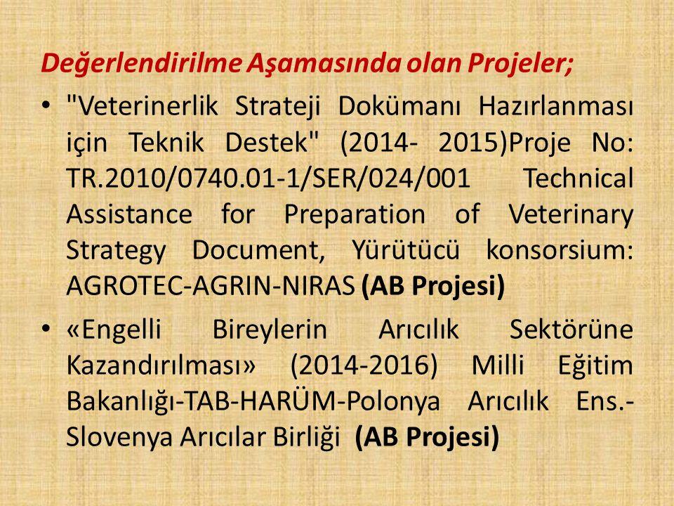 Değerlendirilme Aşamasında olan Projeler;