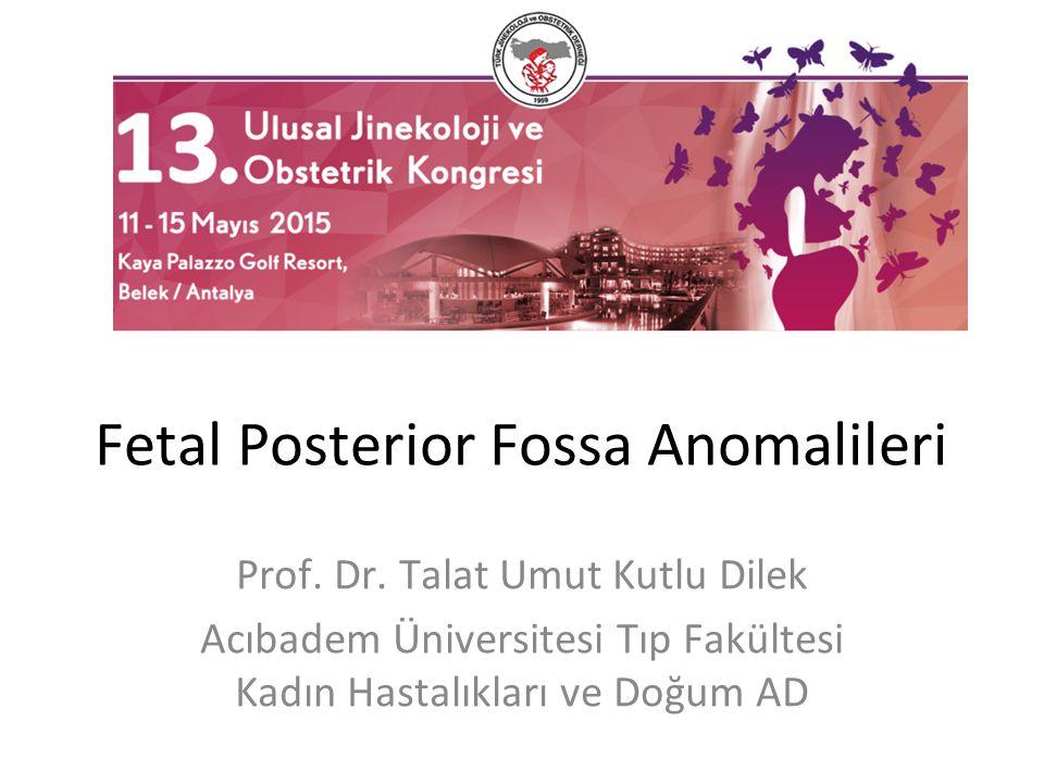 Fetal Posterior Fossa Anomalileri