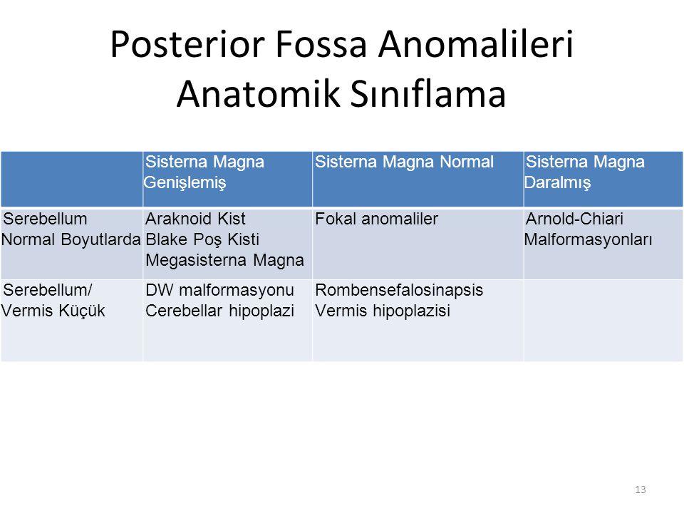 Posterior Fossa Anomalileri Anatomik Sınıflama