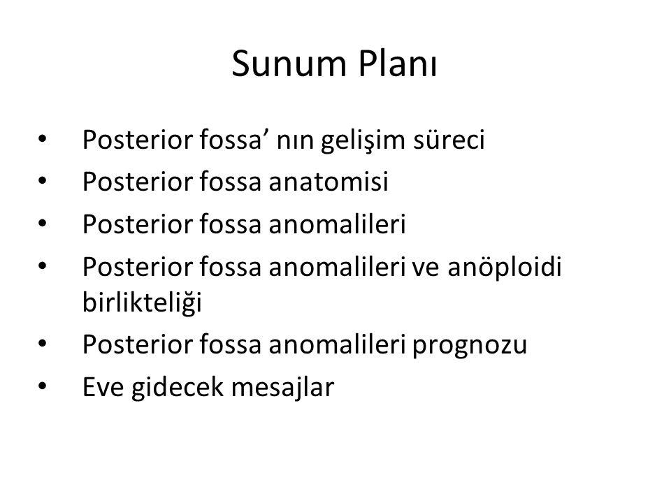 Sunum Planı Posterior fossa' nın gelişim süreci