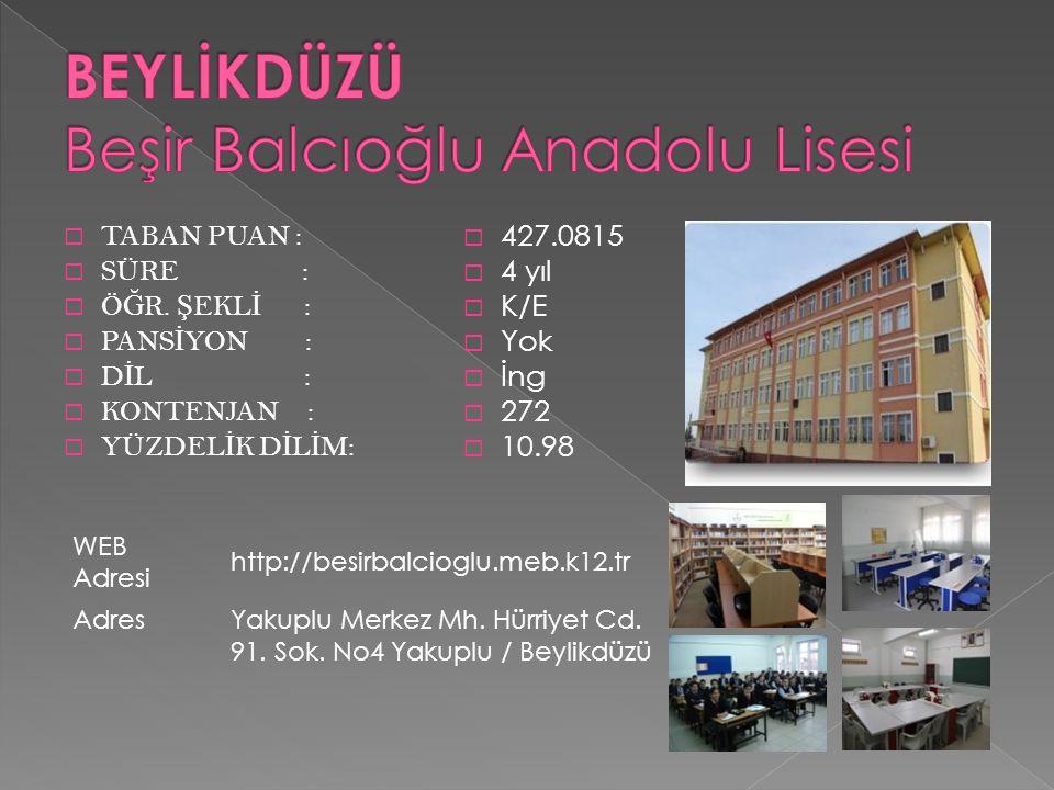 BEYLİKDÜZÜ Beşir Balcıoğlu Anadolu Lisesi