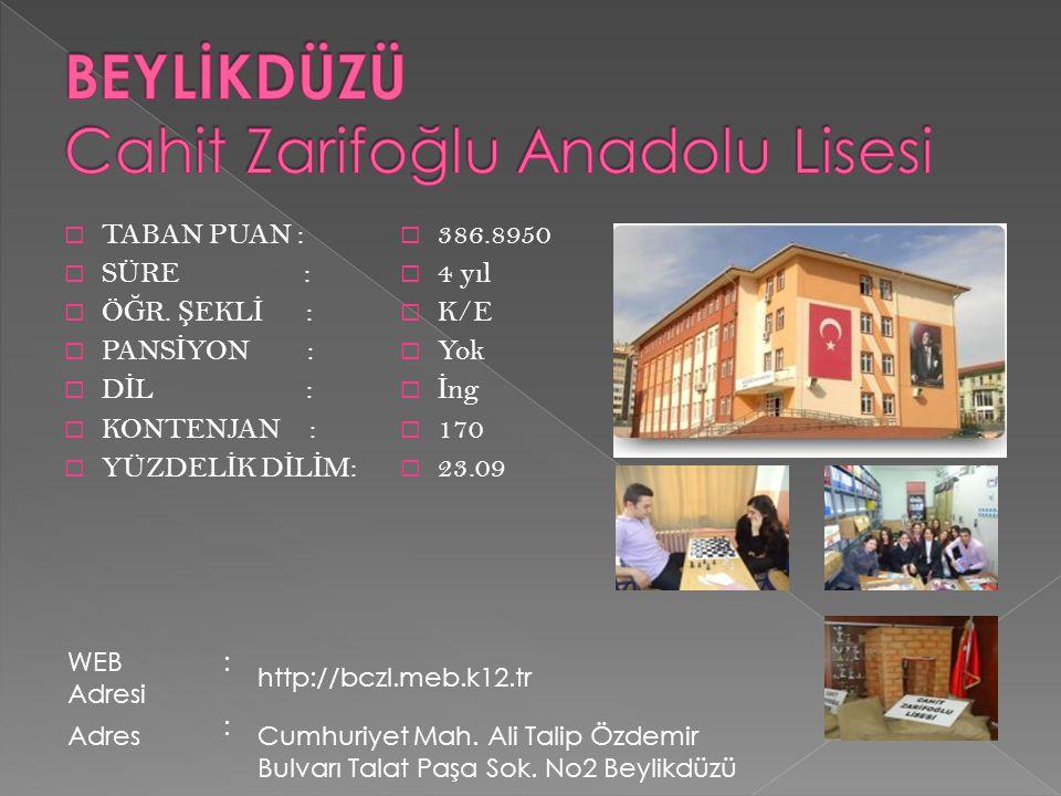 BEYLİKDÜZÜ Cahit Zarifoğlu Anadolu Lisesi