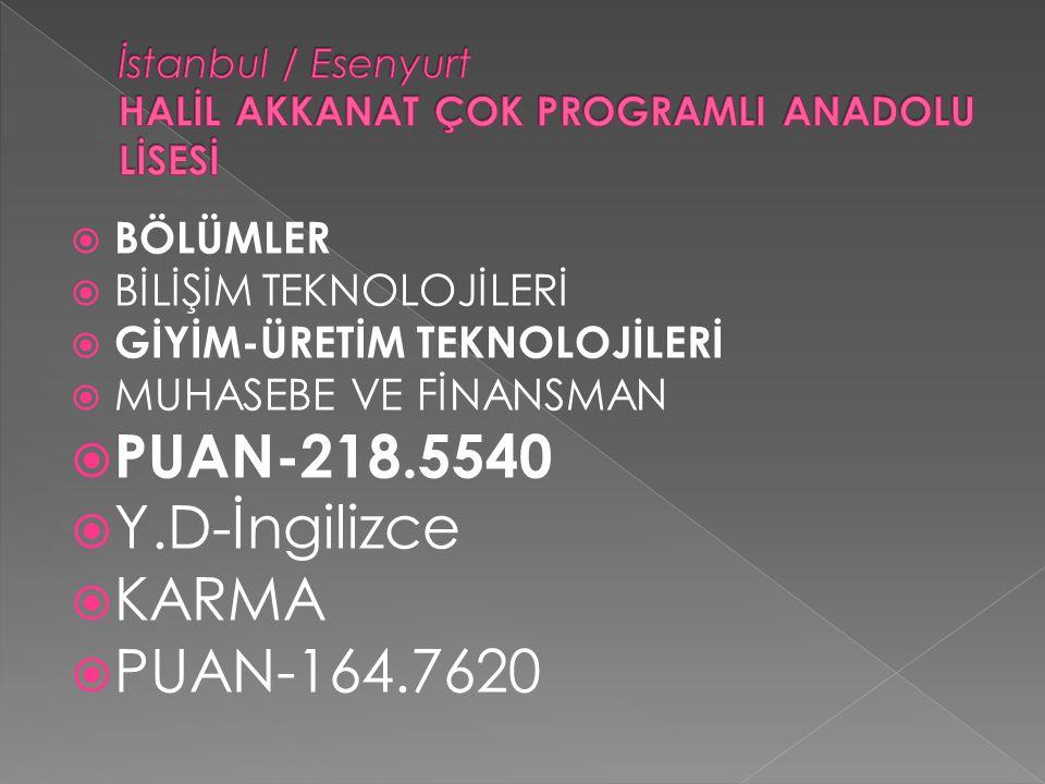 İstanbul / Esenyurt HALİL AKKANAT ÇOK PROGRAMLI ANADOLU LİSESİ