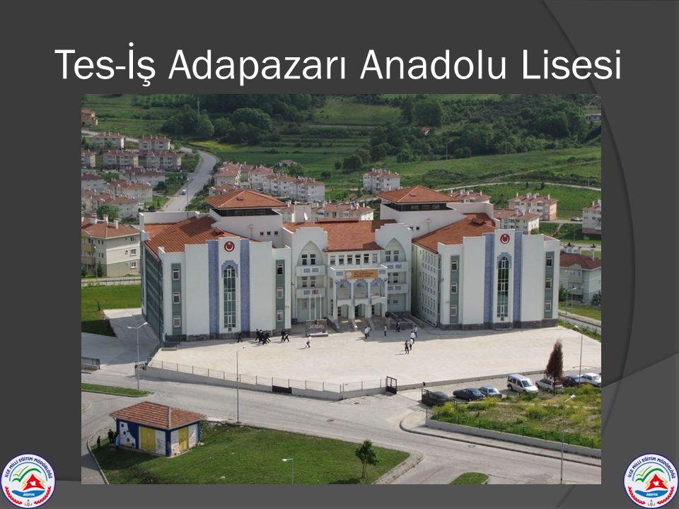 Tes-İş Adapazarı Anadolu Lisesi