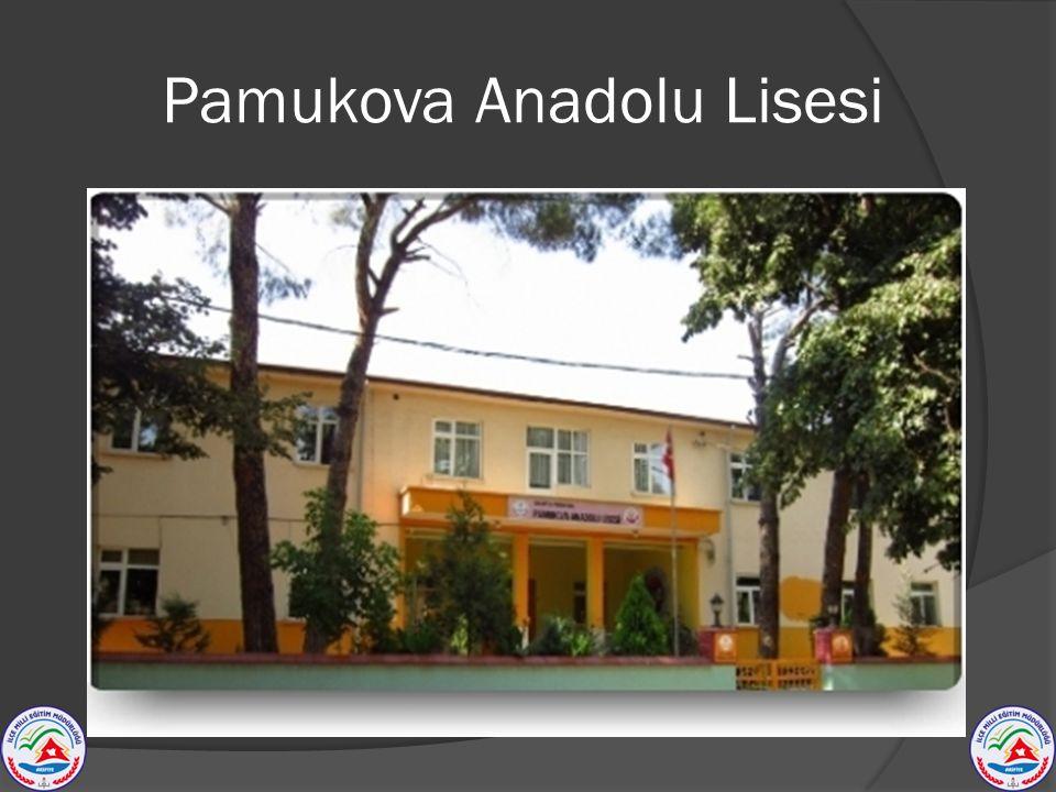 Pamukova Anadolu Lisesi