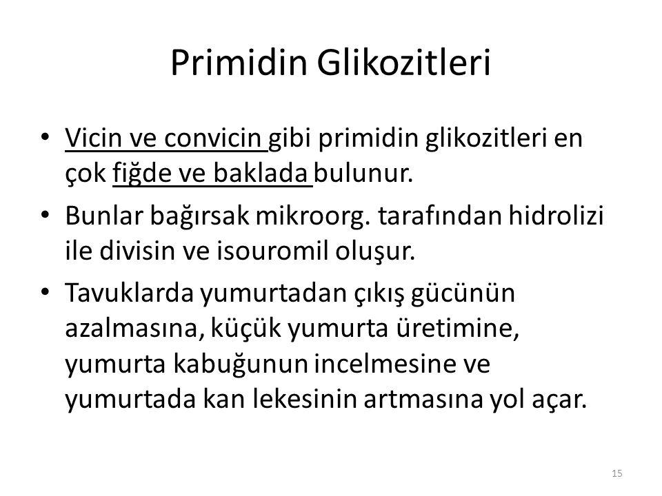 Primidin Glikozitleri