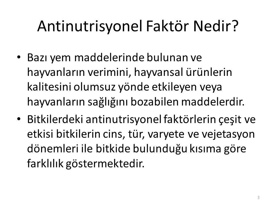 Antinutrisyonel Faktör Nedir