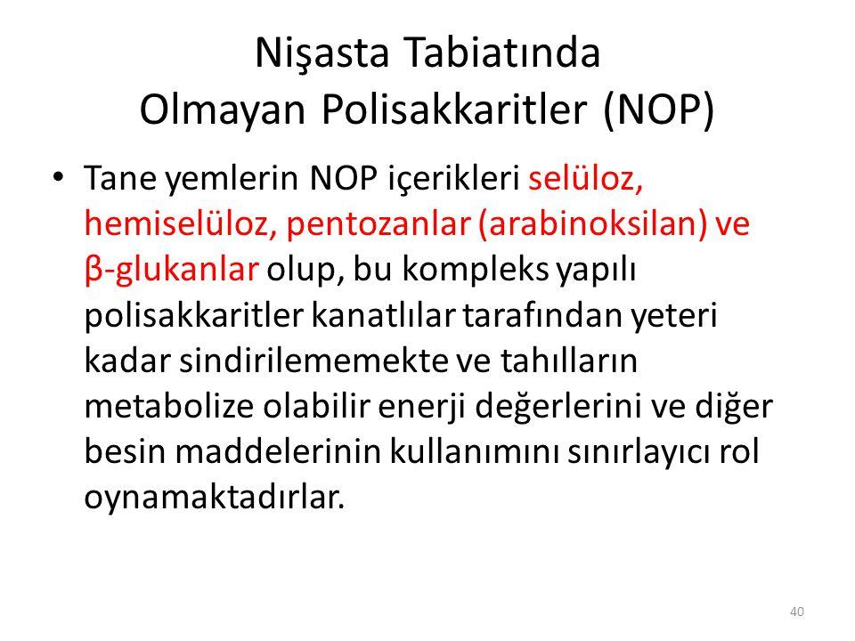 Nişasta Tabiatında Olmayan Polisakkaritler (NOP)
