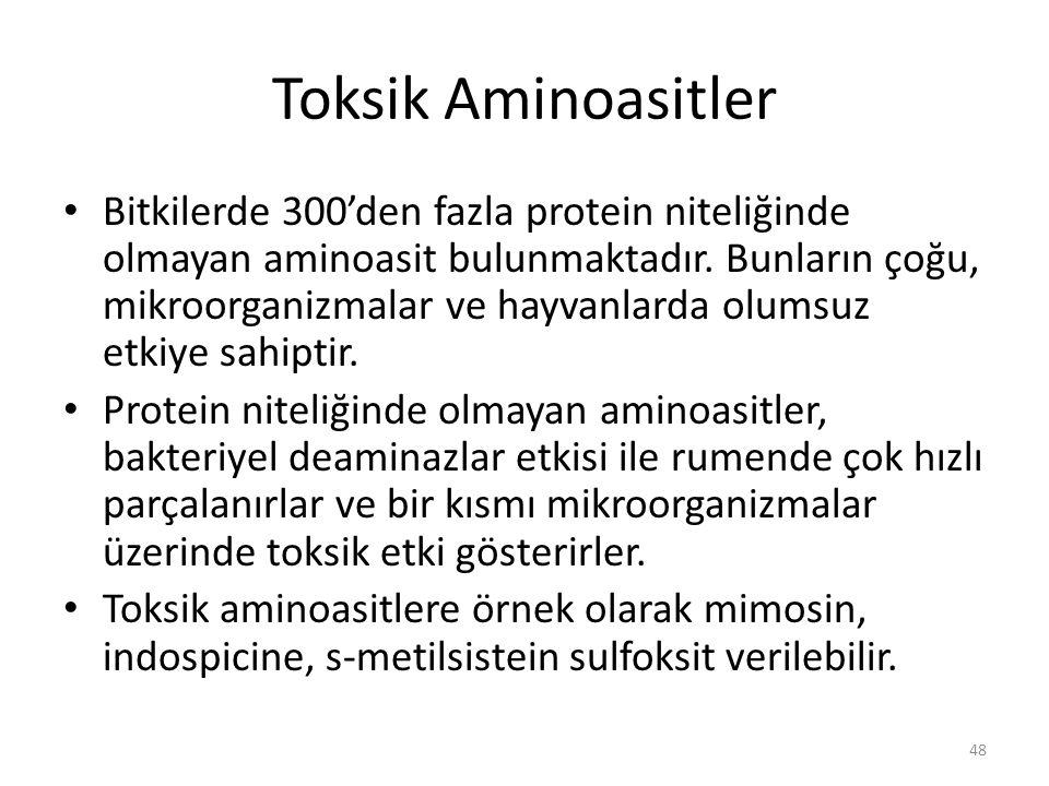 Toksik Aminoasitler