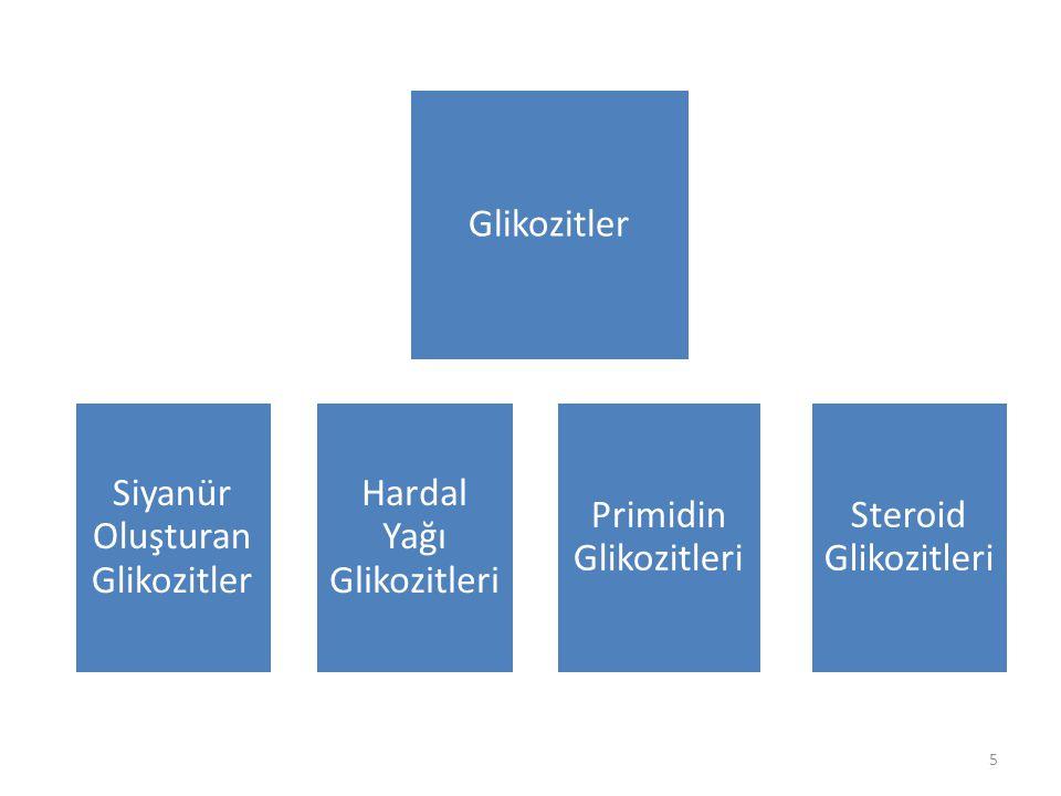 Siyanür Oluşturan Glikozitler Hardal Yağı Glikozitleri