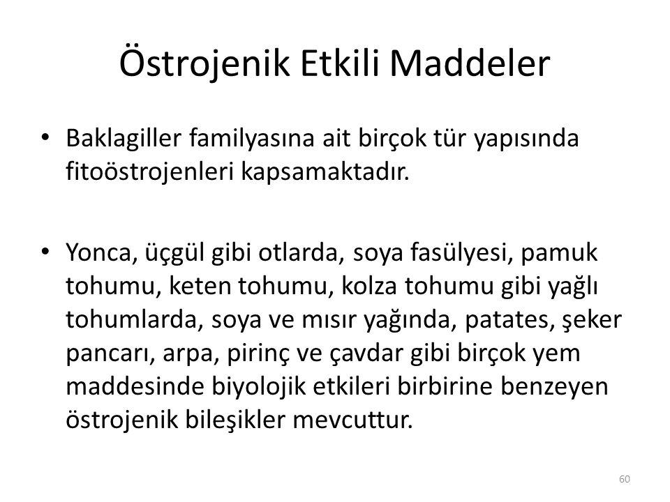 Östrojenik Etkili Maddeler