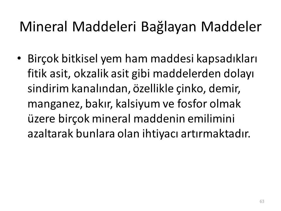 Mineral Maddeleri Bağlayan Maddeler