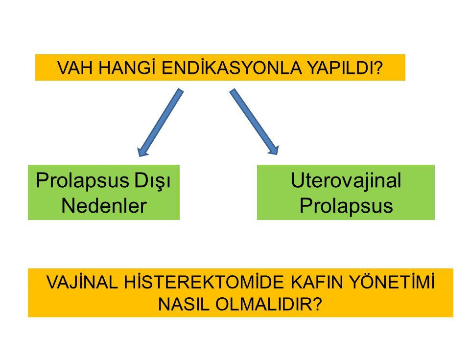Prolapsus Dışı Nedenler Uterovajinal Prolapsus