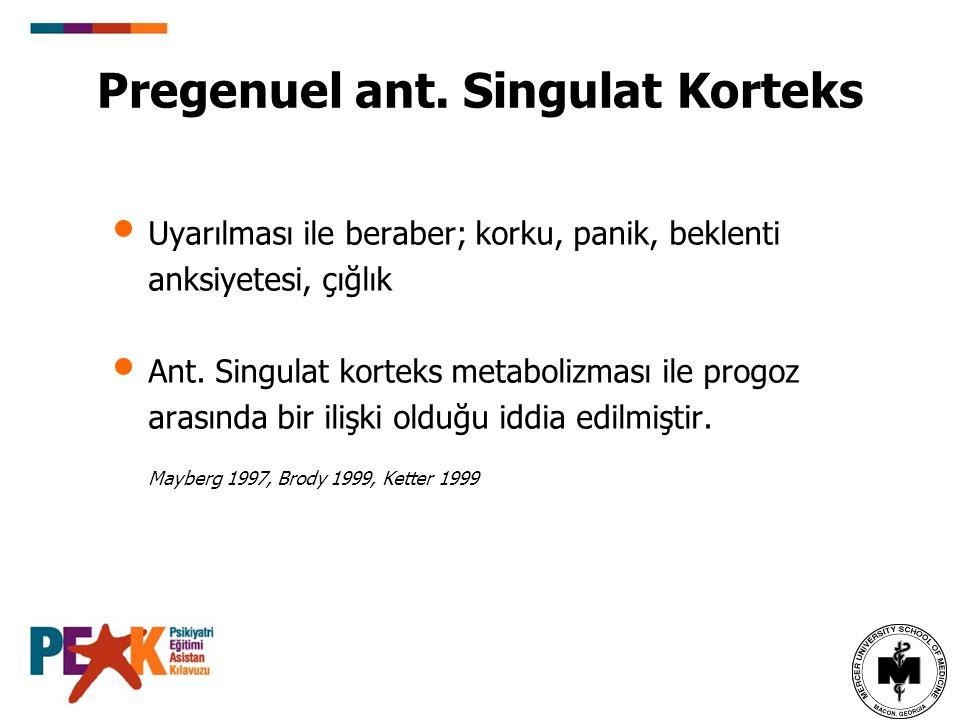 Pregenuel ant. Singulat Korteks