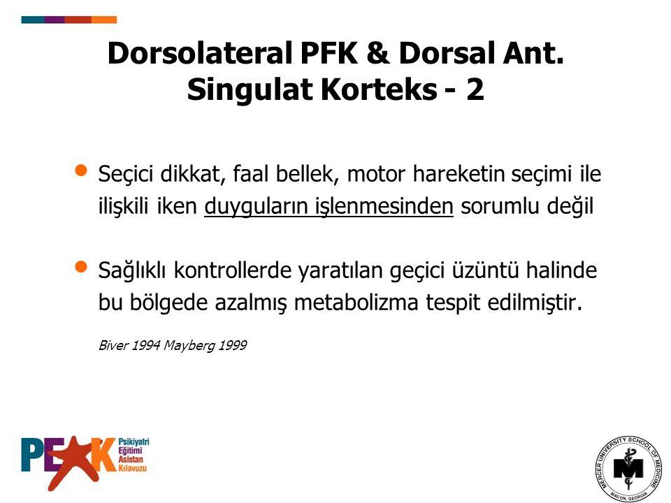 Dorsolateral PFK & Dorsal Ant. Singulat Korteks - 2
