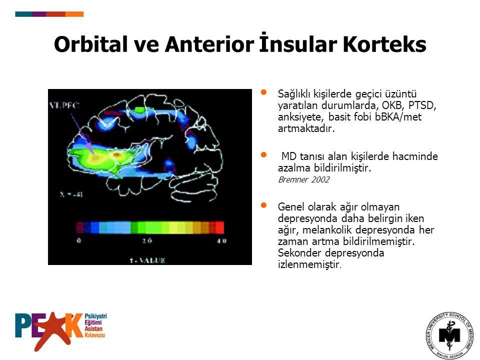 Orbital ve Anterior İnsular Korteks