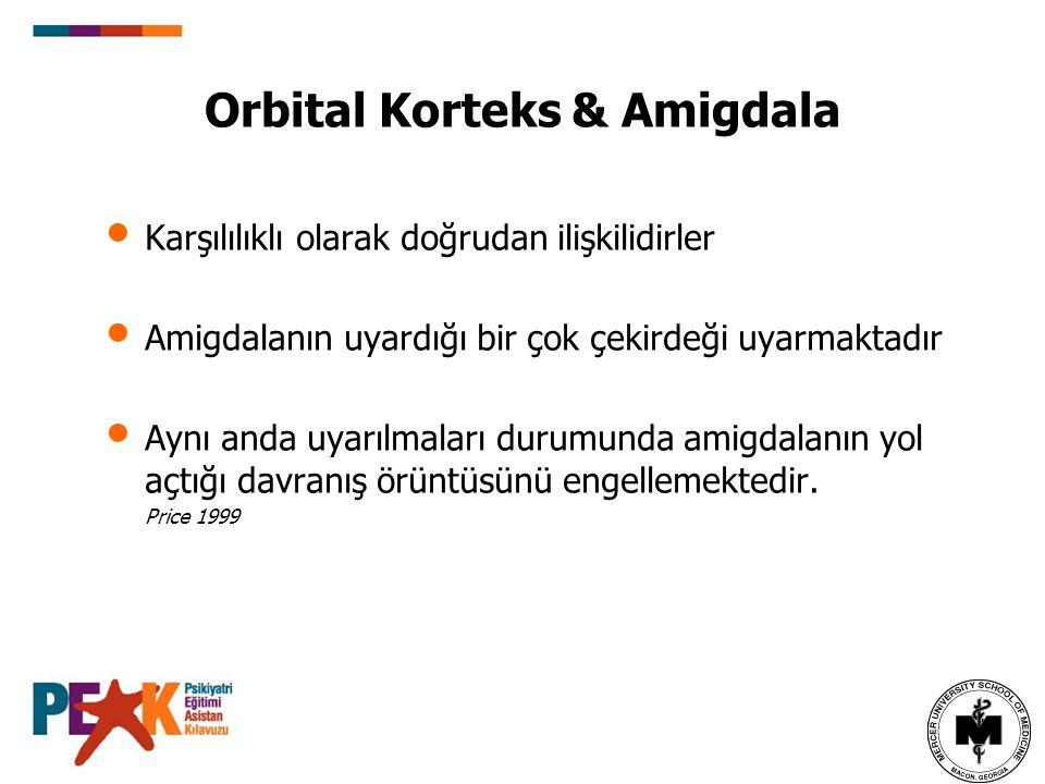 Orbital Korteks & Amigdala