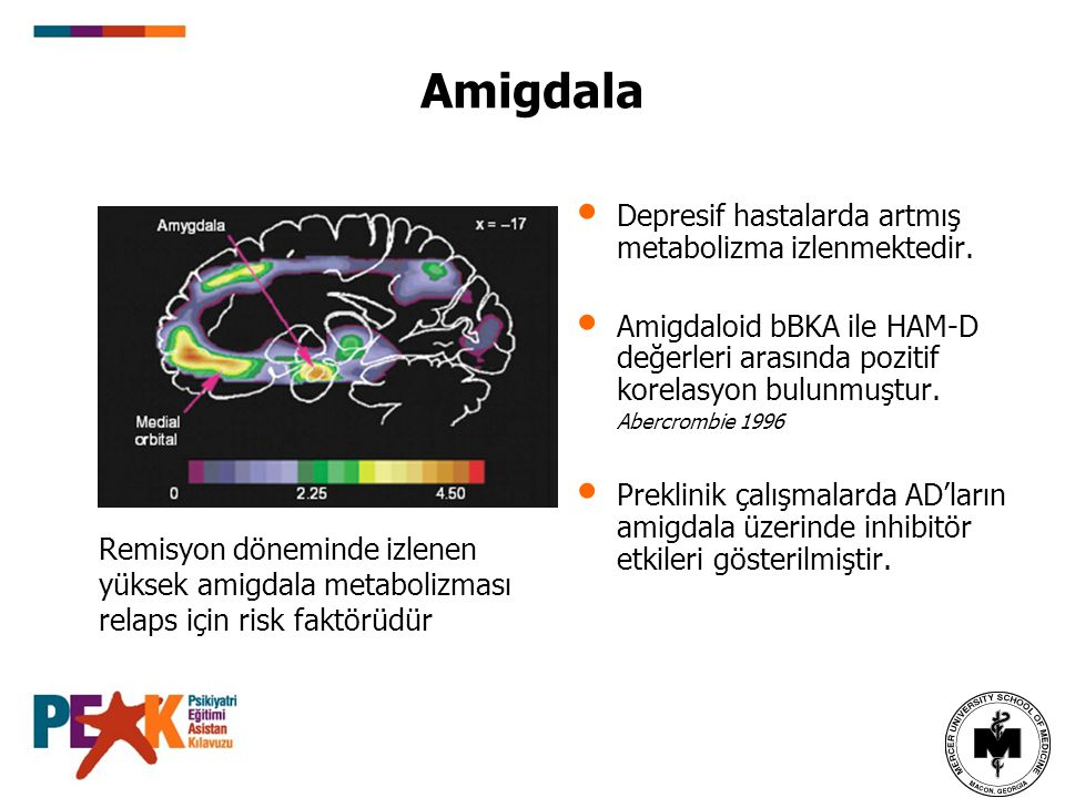 Amigdala Depresif hastalarda artmış metabolizma izlenmektedir.