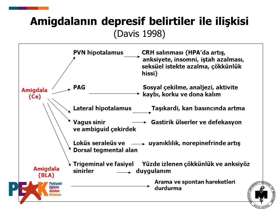 Amigdalanın depresif belirtiler ile ilişkisi (Davis 1998)