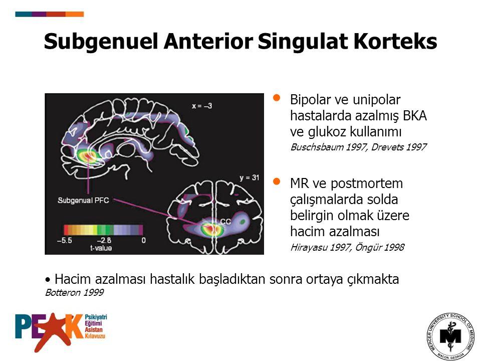 Subgenuel Anterior Singulat Korteks
