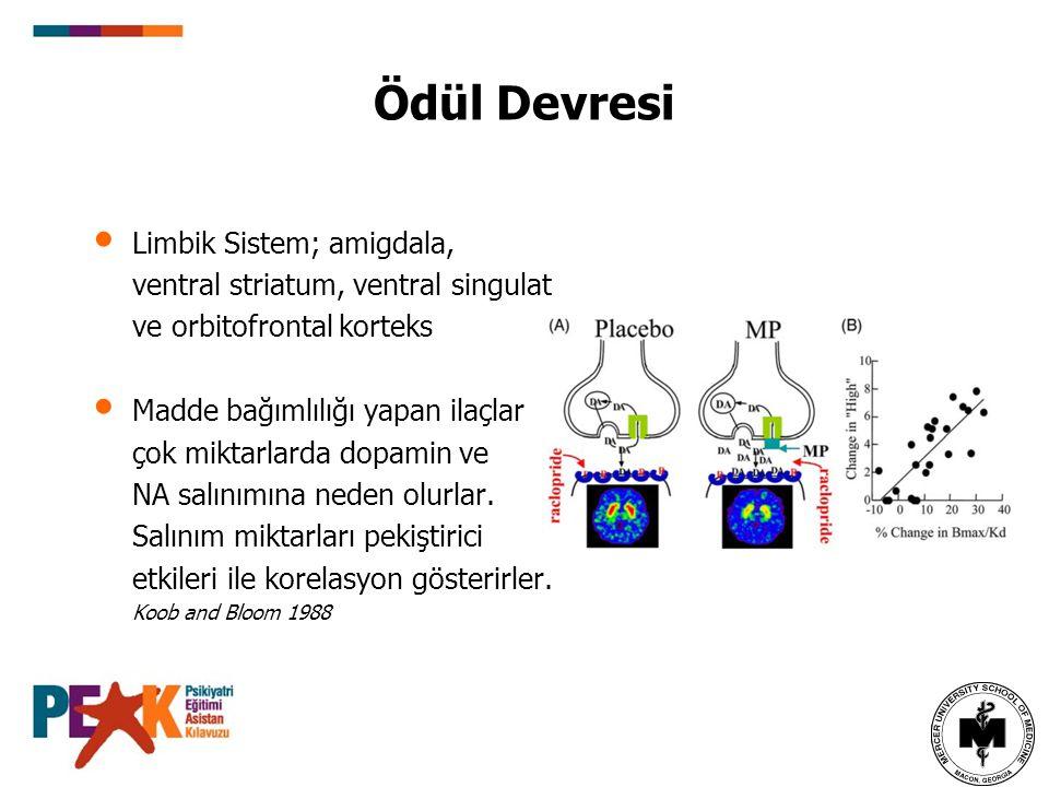 Ödül Devresi Limbik Sistem; amigdala,