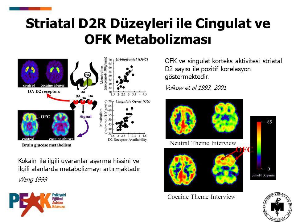 Striatal D2R Düzeyleri ile Cingulat ve OFK Metabolizması
