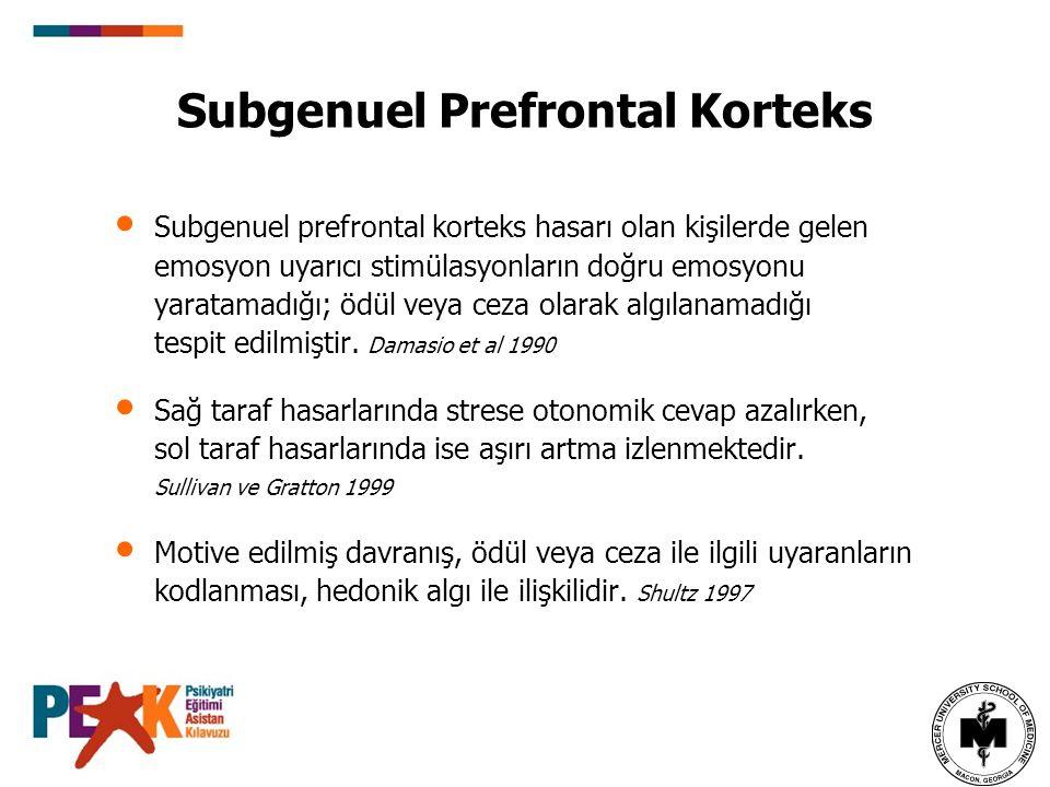Subgenuel Prefrontal Korteks