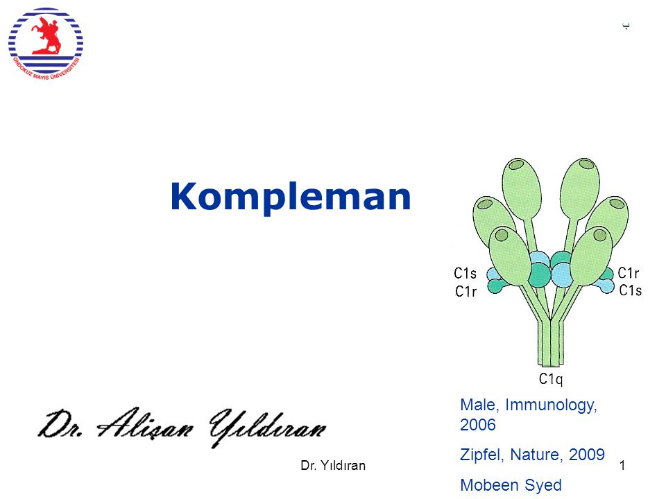 Kompleman Male, Immunology, 2006 Zipfel, Nature, 2009 Mobeen Syed